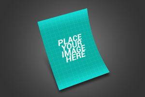 Free Flyer Mockup With 8 Angles