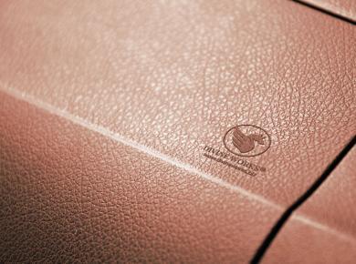 Leather Embossed Logo Free Mockup