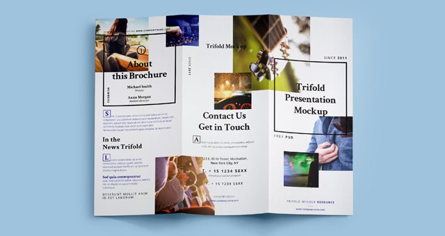 Tri Fold Free Mockup Template