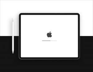 20+Free New iPad Pro Mockups