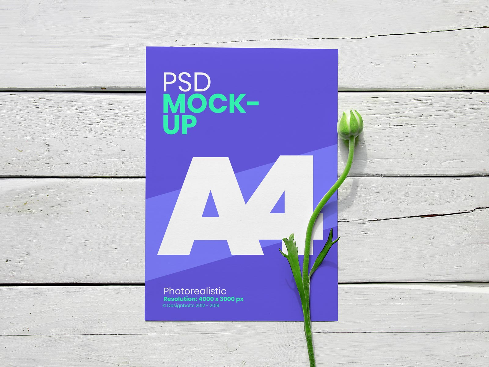 Free A4 Flyer With Flower Mockup