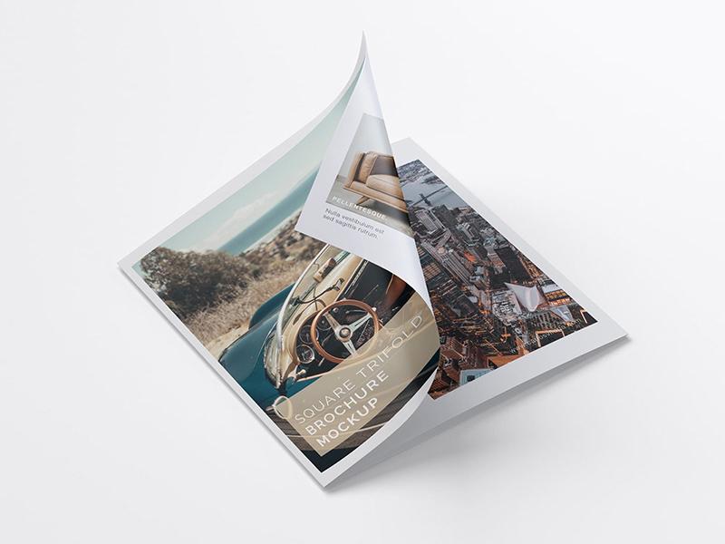 Trifold Brochure Free PSD Mockup Set