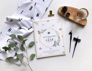 Texture Paper Beside Leaf – Free Mockup