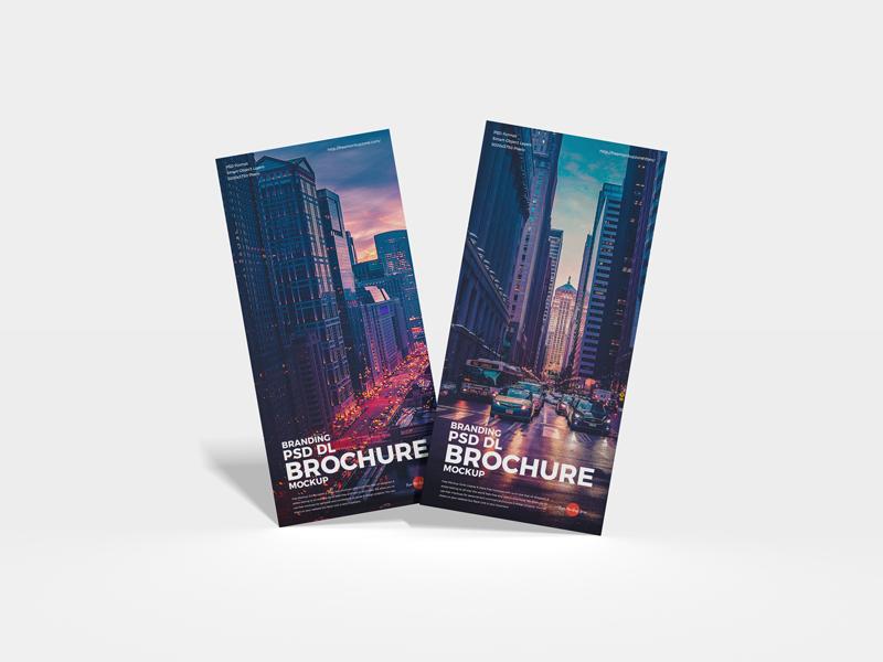 Free Branding DL Brochure Mockup
