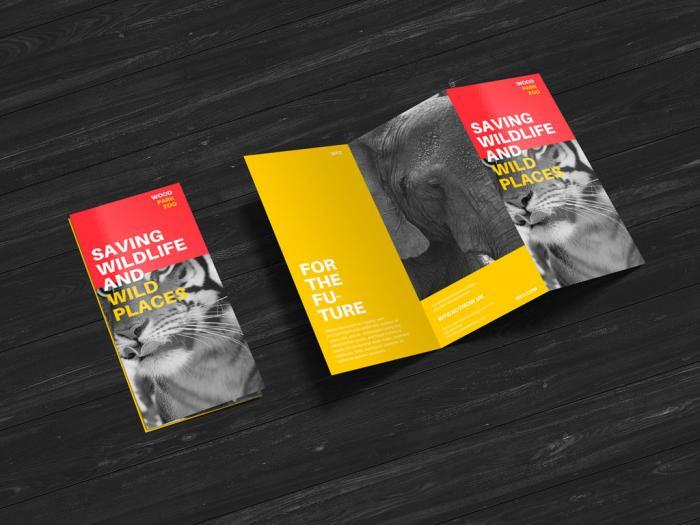 Creative Z-Fold Brochure Free PSD Mockup