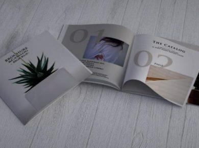 Modern Catalog / Brochure Free Mock-ups