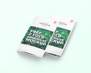 Free 2 Fold Brochure Mockup (PSD)